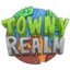 TownyRealm 1.15.2 icon